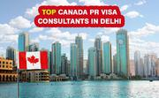 Best Visa Consultants in Delhi,  India  | Aspire World Immigration
